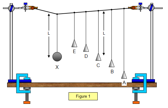 what affects the frequency of a pendulum In this activity you'll figure out how the pendulum's frequency depends on the length of the string, the weight of the bob, and the force of gravity we can't change the force of gravity (not without a spaceship) but we can vary the weight and the length, and see how that affects the frequency.