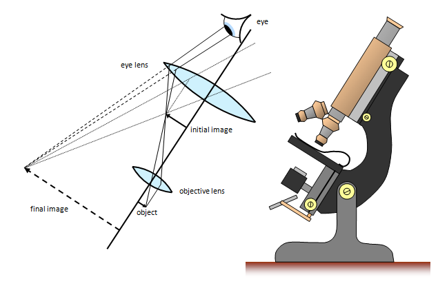 Schoolphysics welcome the compound microscope ccuart